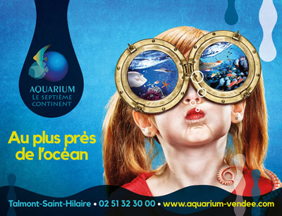 Aquarium Sarah Scaniglia, photographe-retoucheur professionnel - Nantes Portraits, publicité, corporate, reportage, produits, postproduction, culinaire, industrie, postproduction, formations. Photographe nantes, communication...