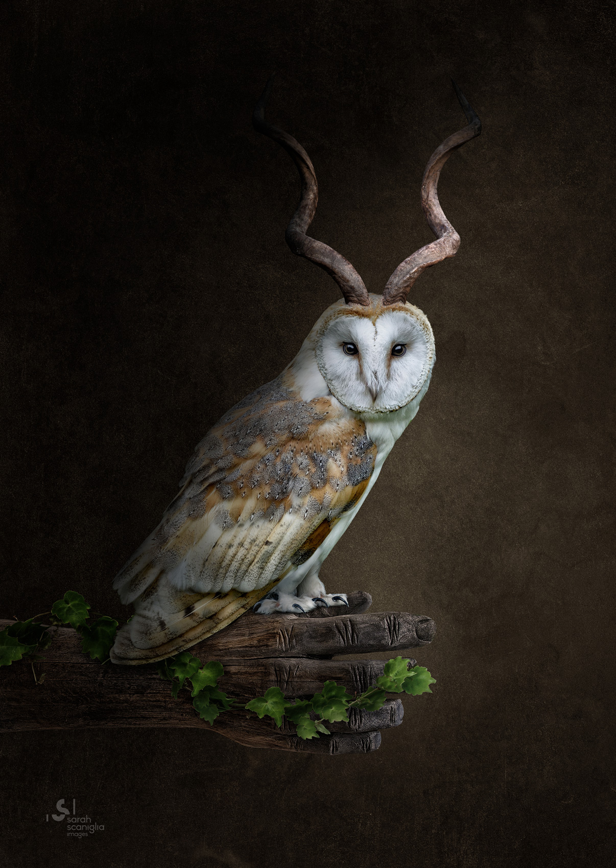 Sarah-Scaniglia-bestiaire-culture-fine-art-nantes-photographe-animaux-nanture-imaginaire-studio-photo-photoshop-compositing-artiste-chouette-cornes-antilope